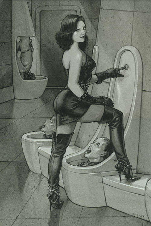 Picture- Femdom toilet Sardax style